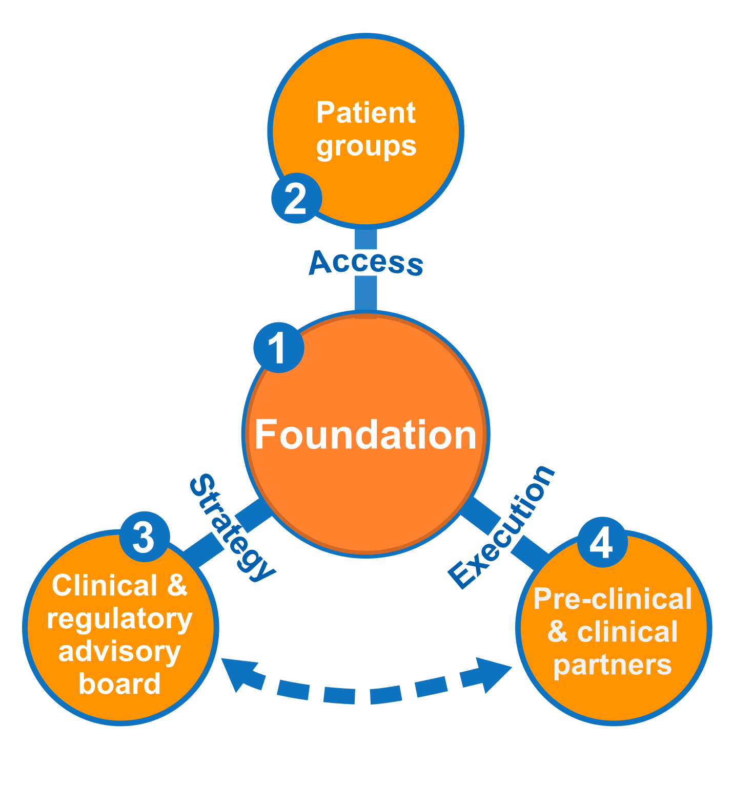 EspeRare's model of developement is based en close collaboration with patient groups, clinical and regulatory advisory board, and pre-clinical and clinical partners