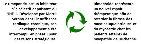 Rimeporide recyclage VF